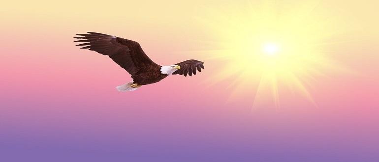 Стойте в свободе, которую даровал нам Христос